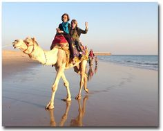 Jinny Beyer Riding a camel in India