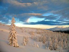 <3 Snow | Fascinating Winter