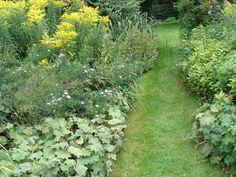 Planter som egner sig som kant mod græsplænen: Hosta, kærmindesøster, bregner, storkenæb, løvefod, violer, kæmpestenbræk, guldnælde, dagliljer, høstanemoner, kulsukker, citronmelisse, per...
