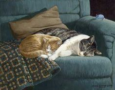 A925105597:Couch Potatoes- Cats by Weirs