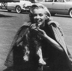Marilyn Monroe & #puppy