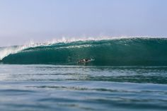 surf at zopilote surf camp
