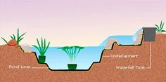 How to build a water garden~ read this before you begin digging