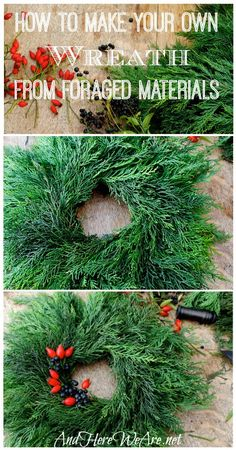 How to Make Your Own Wreath! And Here We Are... Make a really pretty wreath from foliage you can find on a walk.