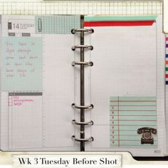 Week 3 Tuesday Before Shot #filofax #daytimer #franklin covey #diyfish #lifemapping #planner #organization #agenda