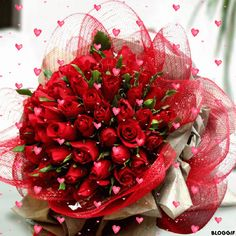 MyCityFlowers is providing online cake and flower delivery in Noida. Get same day online bouquet delivery and cake delivery in Noida on anniversary, wedding etc. Bonsai Plants For Sale, Bonsai Plants Online, Order Plants Online, Buy Plants, Rose Delivery, Flower Delivery, International Flowers, Valentine Day Gifts, Valentines
