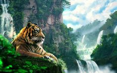tiger landscape art forest mountain waterfall Canvas Wall Poster