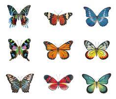 9 Large Butterflies fabric by angelaanderson on Spoonflower - custom fabric