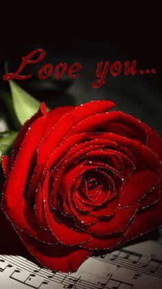 Love you red rose gif - Modern Beautiful Gif, Beautiful Roses, Beautiful Candles, Pretty Roses, Gif Kunst, Flowers Gif, Roses Gif, Gift Flowers, Red Flowers