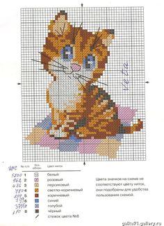 Gallery.ru / Фото #34 - Кoшки - dainora33