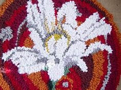 Debbie Siniska ox eye daisy