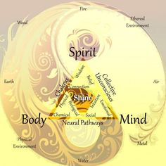This chart demonstrates the simultaneous body mind feeling, environment data input, imprinting the physical body, which must manifest the data instantly.  At the biology level, we manifest the Mind feeling system instantly, perfectly with or without Awareness.  Better to stay Aware.