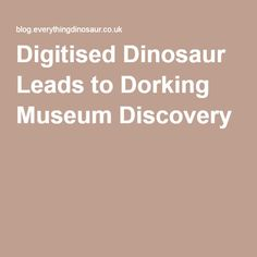 Digitised Dinosaur Leads to Dorking Museum Discovery