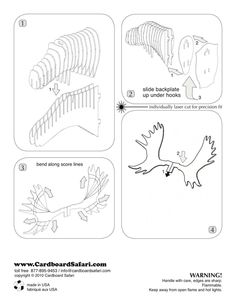 1000 images about cardboard animals on pinterest arnhem for Free cardboard taxidermy templates