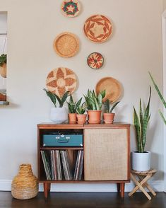 #uohome hashtag on Instagram • Photos and Videos Planter Pots, Gallery Wall, Cactus Plants, Plant Pots