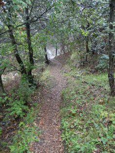 Vernazza & Corniglia - sentiero n° 507