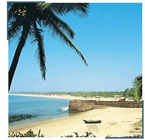 High rated tour itinerary for South India spice tour, spice tour Kerala, Kerala City of Spices, Kerala Backwaters tour packages and whole South India Tour. Wildlife safari at Nagarhole Also.