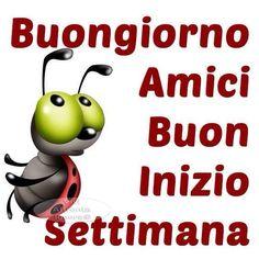 Buongiorno e buona settimana a tutti! www.studiobianchivicard.it