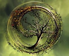 Tree of Life Represents | uploaded to pinterest
