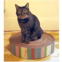 Recycled Cardboard Kitty Pad Craft lets you recycle and make your cat happy too. More pet crafts at www.freekidscrafts.com