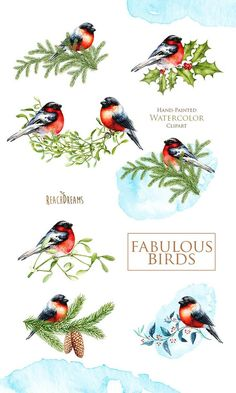 Read information on DIY Christmas Crafts Christmas Bird, Christmas Cards To Make, Christmas Clipart, Christmas Printables, Merry Christmas, Christmas Decoupage, Christmas Projects, Watercolor Images, Watercolor Bird
