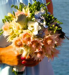 Blushing bride & Freesia.. proving that natives & cottage blossoms do you marry well!