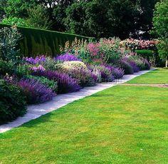 longue bordure de vivaces dont des géraniums, sauges, nepetas, anthémis, macleaya cordata et phlox menant à un pergola de rosiers.