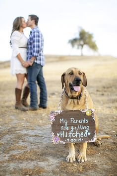 My pups will be at my wedding this year maybe not all of them but at least too and this would be perfect.