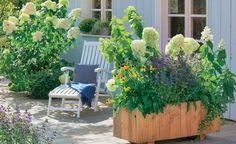 10 tolle Deko-Ideen für den Landhausgarten -  Wenn Sie sich nach einem naturnahen und üppigen Garten sehnen, ist ein Landhausgarten genau das Richtige für Sie. Wir haben hier für Sie zehn schöne Deko-Ideen im Landhaus-Stil zusammengestellt.