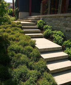 escalier béton extérieur aménagement idée