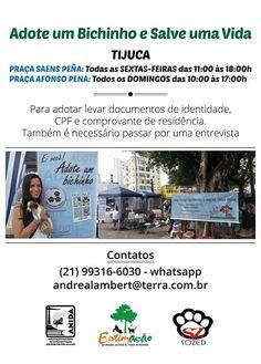 BONDE DA BARDOT: RJ: Campanhas de adoção de cães e gatos acontecem na Tijuca, nesta sexta e sábado (15 e 16/04)