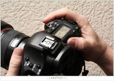 Canon Cameras - Photography Tips You Should Know About Dslr Photography Tips, Photography Themes, Portrait Photography, Canon Kamera, Canon Camera Models, Fotografie Hacks, Nikon Digital Slr, Videos, Camera Hacks