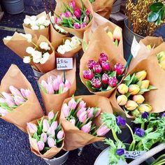 tulip flowers in brown paper | flower market