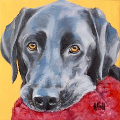 buddy :: oil on canvas :: betsy hall