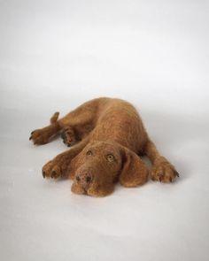 Needle felted Vizsla, dog sculpture