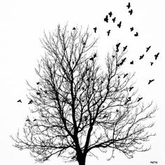 Tree and birds white