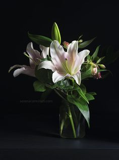 Pink Lily with alstroemeria flowers. Still life photography by Serena Carminati.  Foodfulife.com