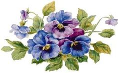 Pansies Photo:  This Photo was uploaded by jade95_2010. Find other Pansies pictures and photos or upload your own with Photobucket free image and video h...