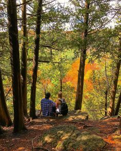 You could spend a lifetime in Southern Ontario and still not discover much less visit all of its various natural gems, but fall is the ideal time t. Tree Art, Day Trips, Cute Couples, Ontario, Southern, Country Roads, Gems, Natural, Fall