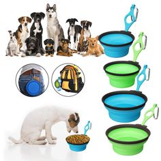 Pet Silica Gel Bowl Dog cat Collapsible Silicone Dow Bowl Candy Color Outdoor Travel Portable Puppy Food Container Feeder Dish at Banggood Sierra Leone, Belize, Ghana, Sri Lanka, Silica Gel, Puppy Food, Cat Feeding, Pet Travel, Cat Supplies