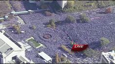 KC celebrates Royals with parade, rally | Latest News - Home