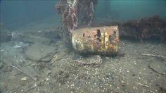 land and sea junk