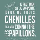 """16x20+poster+with+quote+from+le+Petit+Prince:+""""Il+faut+que+je+supporte+deux+ou+trois+chenilles+si+je+veux+connaitre+les+papillons.""""+Print+this+post..."""
