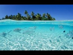 Beautiful Underwater Chillout Cafe Del Mar Lounge Mix 2013 HD