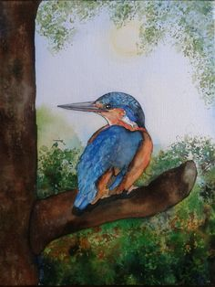 Betty Kloosterman | WATERCOLOR | Kingfisher