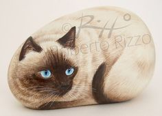 Siamese cat | Rock painting art by Roberto Rizzo