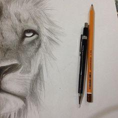 Rei (parte 1)  #desenho #desenhando #ilustração #realismo #leao #draw #drawin #realism #lyon #king #tattoo #boanoite #africa @you_rocked