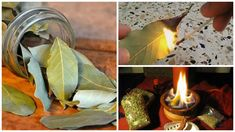 Bay leaves or laurel leaves are mostly used for cooking and they are used worldwide in different cuisines. Here's what happens if you burn a bay leaf at home and wait a few minutes. Home Remedies, Natural Remedies, Burning Bay Leaves, New Age Books, O Ritual, Laurel Leaves, Healthy Tips, Health And Wellness, Health Fitness