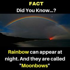""": Did You Know. can appear at And they are called """" Interesting Science Facts, Amazing Science Facts, Interesting Facts About World, Amazing Facts About Space, Amazing Facts For Students, Wow Facts, Real Facts, Wtf Fun Facts, Random Facts"""