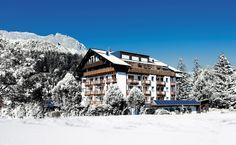 Das Hotel Der Löwe im Winter